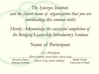 The Synergos Institute