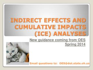 INDIRECT EFFECTS AND  CUMULATIVE  IMPACTS (ICE) ANALYSES