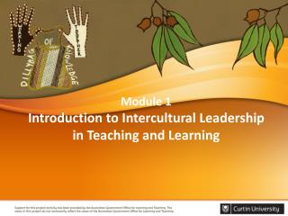 Module 1  Introduction to Intercultural Leadership in Teaching and Learning
