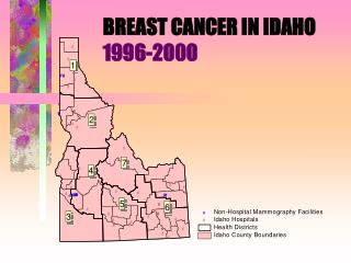 BREAST CANCER IN IDAHO 1996-2000