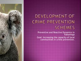 Development of crime prevention schemes