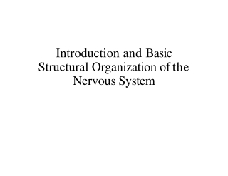 Introduction and Basic Structural Organization of the Nervous System