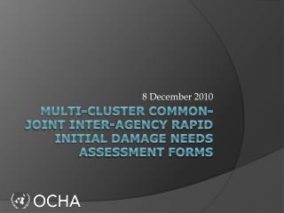 Multi-Cluster Common-Joint Inter-Agency Rapid Initial Damage Needs Assessment Forms