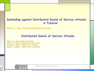 Secure Shell  Denial of Service Attacks