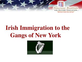 Irish Immigration to the     Gangs of New York