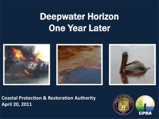 Deepwater Horizon   One Year Later