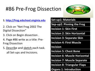 #86 Pre-Frog Dissection
