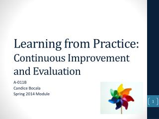 Learning from Practice:  Continuous Improvement and Evaluation