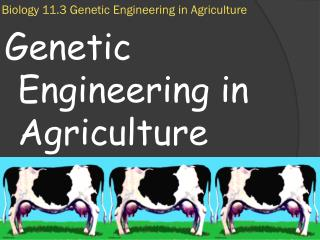 Biology 11.3 Genetic Engineering in Agriculture
