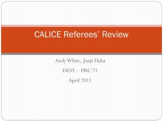CALICE Referees' Review