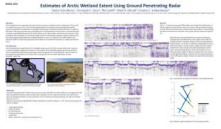 Estimates of Arctic Wetland Extent Using Ground Penetrating Radar