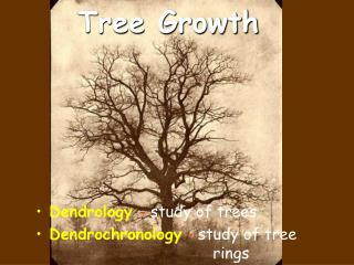 Tree Growth