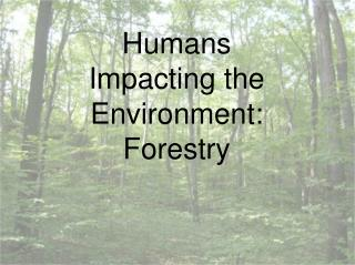 Humans Impacting the Environment: Forestry