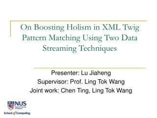 On Boosting Holism in XML Twig Pattern Matching Using Two Data Streaming Techniques