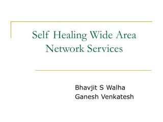 Self Healing Wide Area Network Services