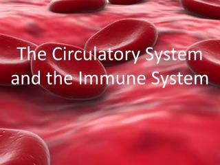 The Circulatory System and the Immune System
