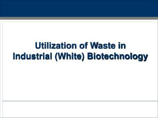 Utilization of Waste in Industrial (White) Biotechnology