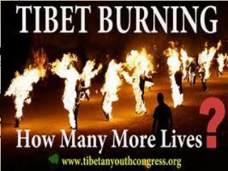 All the Self-immolation that has taken place in Tibet.