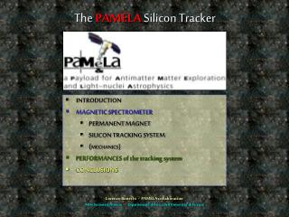 The PAMELA Silicon Tracker