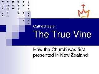 Cathechesis : The True Vine