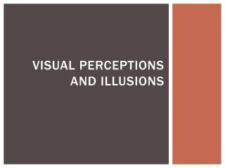 Visual Perceptions and Illusions