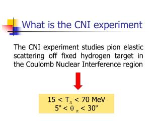 What is the CNI experiment