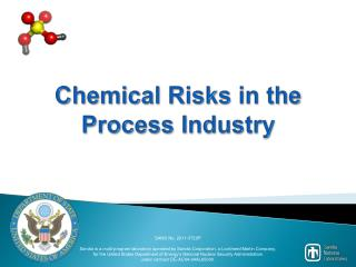 Chemical Risks in the Process Industry
