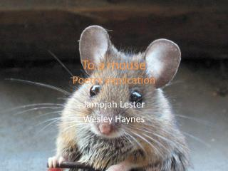 To a mouse Poetry explication