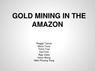 GOLD MINING IN THE AMAZON
