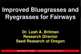 Improved Bluegrasses and Ryegrasses for Fairways