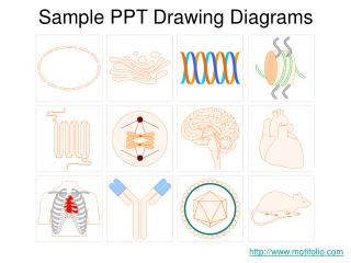 Sample PPT Drawing Diagrams