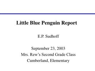 Little Blue Penguin Report