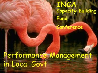 INCA Capacity Building Fund Conference
