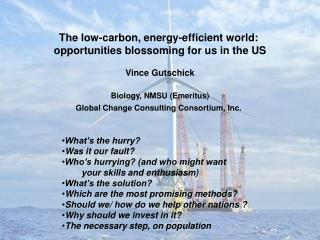 The low-carbon, energy-efficient world:  opportunities blossoming for us in the US Vince Gutschick