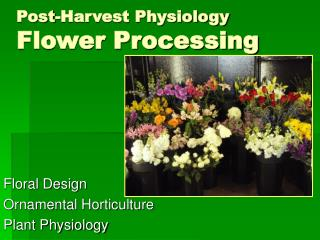 Post-Harvest Physiology Flower Processing