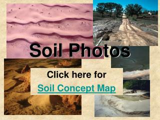 Soil Photos