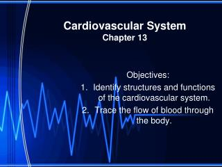 Cardiovascular System Chapter 13