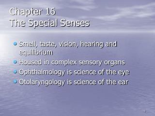 Chapter 16 The Special Senses