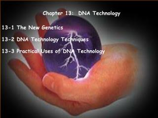 Chapter 13:  DNA Technology