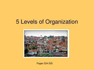 5 Levels of Organization