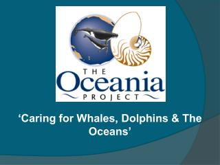 'Caring for Whales, Dolphins & The Oceans'