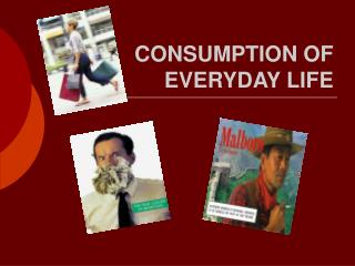 CONSUMPTION OF EVERYDAY LIFE