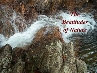 The Beatitudes of Nature