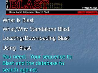What is Blast