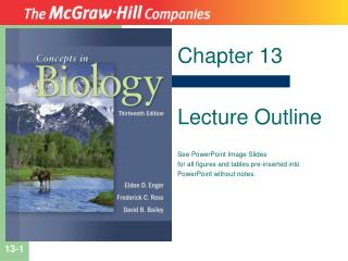 Chapter 13 Lecture Outline See PowerPoint Image Slides