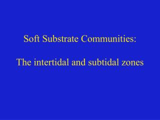 Soft Substrate Communities: The intertidal and subtidal zones