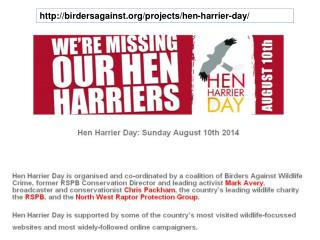 birdersagainst/projects/hen-harrier-day/