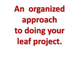 An  organized approach  to doing your  leaf project.
