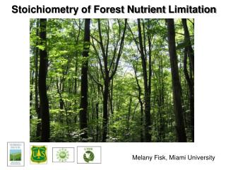 Stoichiometry of Forest Nutrient  L imitation