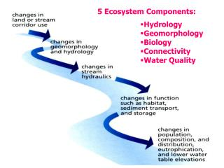 Hydrology Geomorphology Biology Connectivity Water Quality